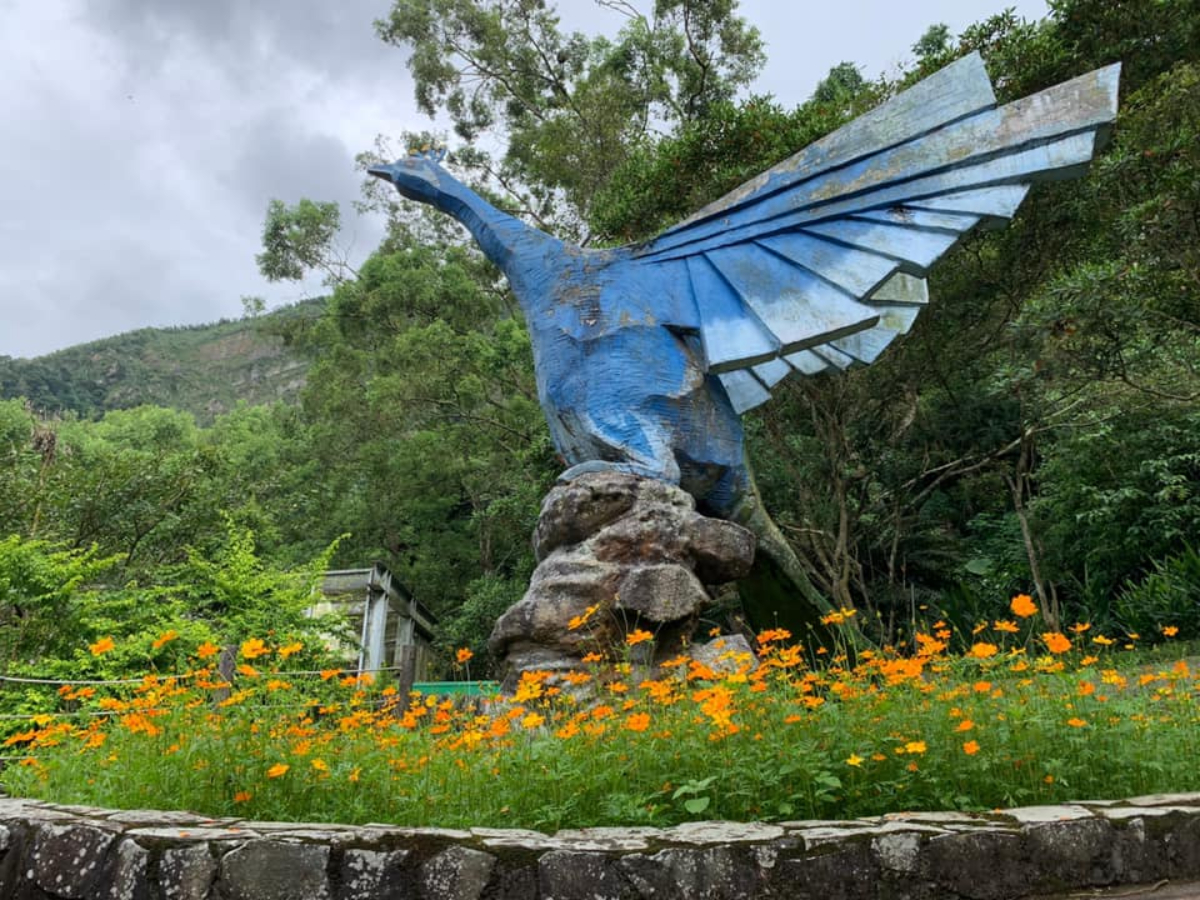 南投-國立自然科學博物館| 鳳凰谷鳥園生態園區全票