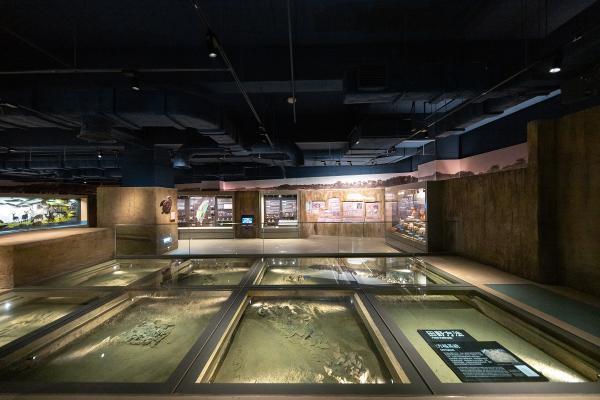 國立臺灣史前文化博物館南科考古館 20190827-9.JPG